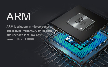 ARM接�技术
