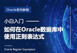 小白入门如何在Oracle数据库中使用正则表达式