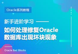 新手进阶学习如何处理修复Oracle数据库出现坏块现象