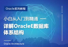 小白从入门到精通详解ORACLE数据库体系结构