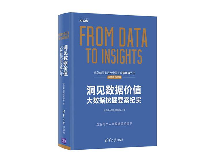洞见数据价值:大数据挖掘要案纪实 毕马威中国大数据团队 著 清华大学出版社