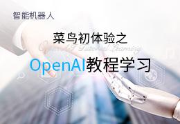 菜鸟初体验之OpenAI教程学习